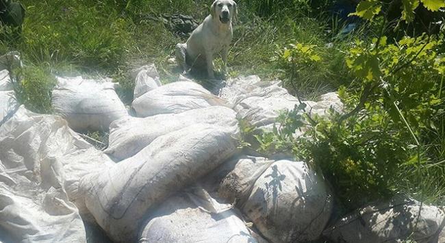 Bitliste terör örgütüne ait 2 ton 50 kg amonyum nitrat ele geçirildi