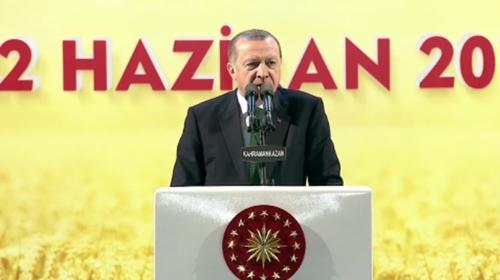 Türkiye Cumhuriyeti devletinden başka bir devletimiz yok