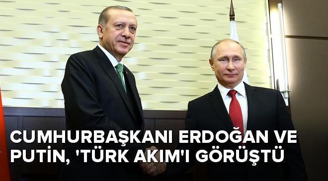 Cumhurbaşkanı Erdoğan, Putin ile Türk Akımı görüştü