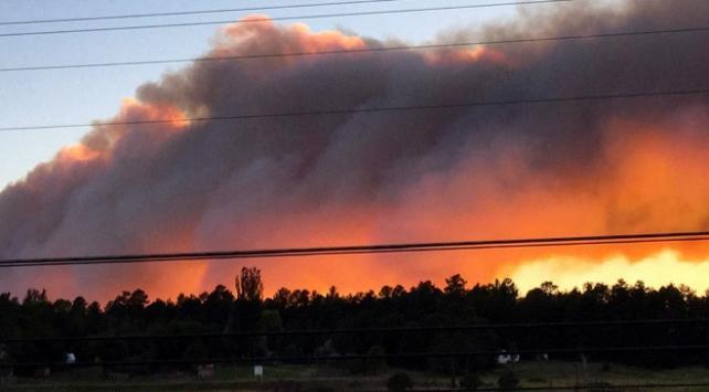 Kütahya ve Bilecikteki orman yangınlarında son durum