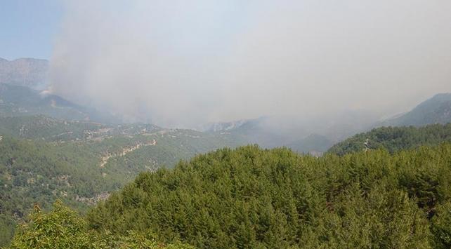 Mersindeki orman yangınına müdahale sürüyor