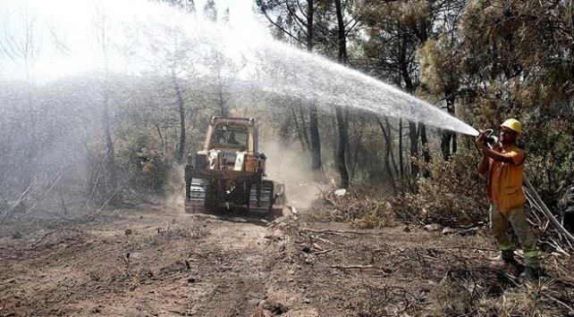 İzmirdeki orman yangınında soğutma çalışmaları sürüyor