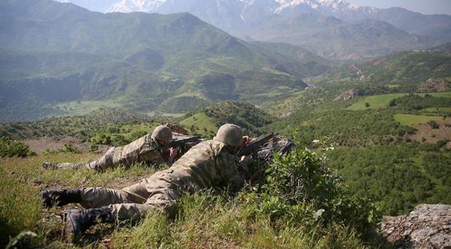 Yeşil listedeki PKKlı terörist etkisiz hale getirildi