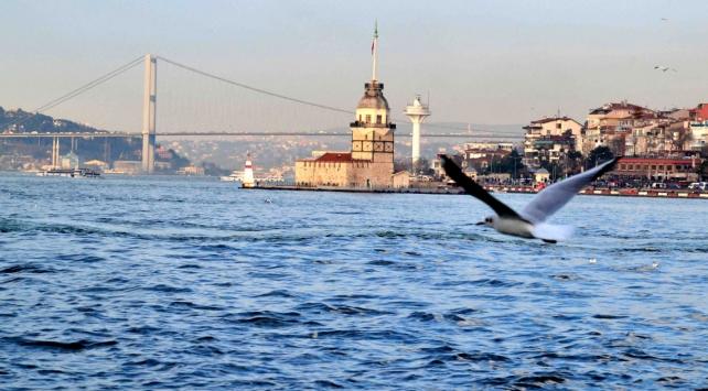 Denizlerde petrol kirliliğine yerli bakteri çözümü