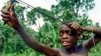 Afrikanın 5 bin yıllık avcıları: Pigmeler