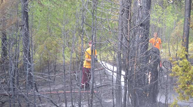 Karabükte çıkan orman yangını söndürüldü