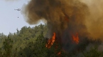 İzmirdeki orman yangını