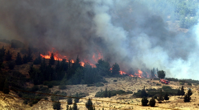 amanos orman yangını ile ilgili görsel sonucu