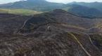 Bayındırdaki orman yangını kontrol altına alındı