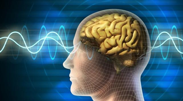 Beyni zinde tutmak için neler yapmalı?