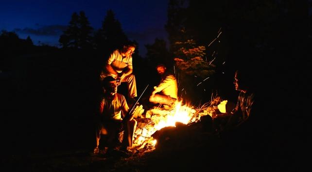 Arıcılar ayı saldırılarına karşı gece gündüz teyakkuzda