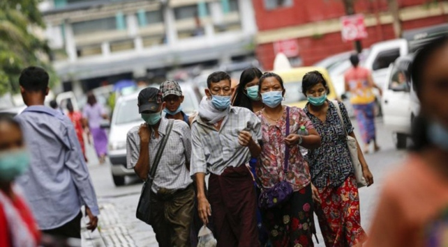 Myanmarda domuz gribi salgını 23 can aldı