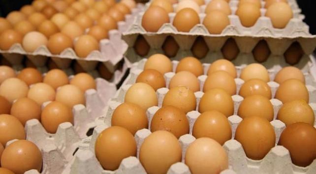 Türkiye, Avrupadaki yumurta krizini izlemeye aldı