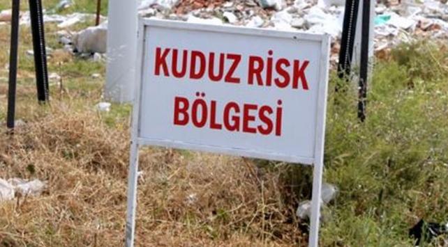 Osmaniyede bir mahalle 3 ay kuduz karantinasına alındı