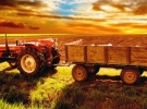 Çiftçilere ödenecek tarımsal destekler belli oldu
