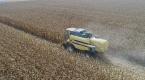 Çiftçi mısır fiyatının açıklanmasını bekliyor