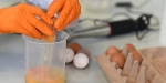 Böcek ilaçlı yumurta krizi çığ gibi büyüyor