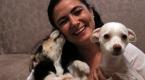 Bankacı kadın hayatını sokak hayvanlarına adadı