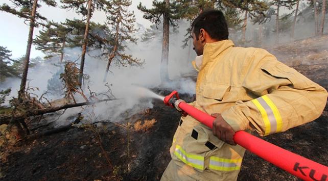 Kütahyadaki orman yangını Bilecike sıçradı