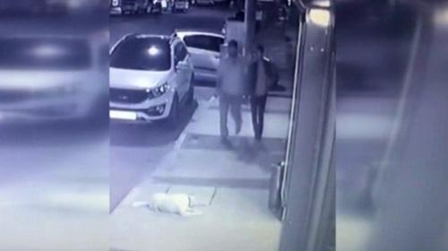 Köpeğe tekme atan kişi yakalandı