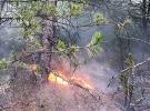 Karabük'te çıkan orman yangınları söndürüldü