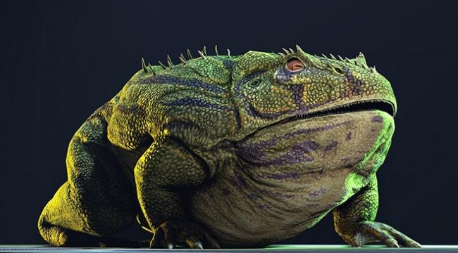 Boynuzlu kurbağa dinozor yiyebilecek çeneye sahip