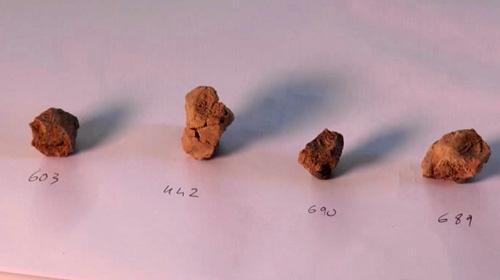 3 bin 200 yıllık mühürler bulundu