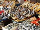 Balıkçılar bu sezon palamuttan umduğunu bulamadı