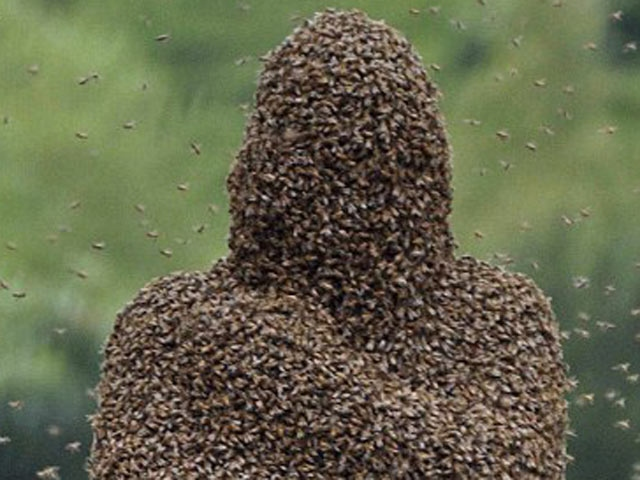 Arılarla Kaplanan İnsan