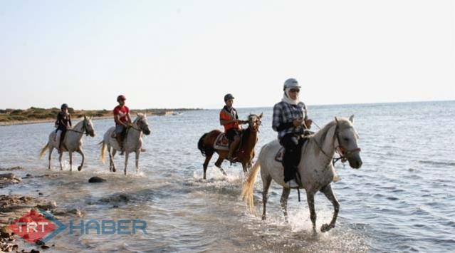 At Safari Turları Büyük İlgi Görüyor