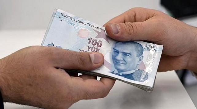 Fındıkta alan bazlı gelir desteği