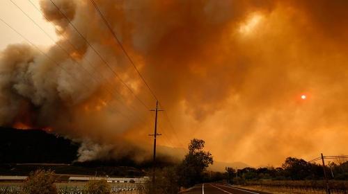 Kaliforniya tarihinin en büyük yangın felaketini yaşıyor