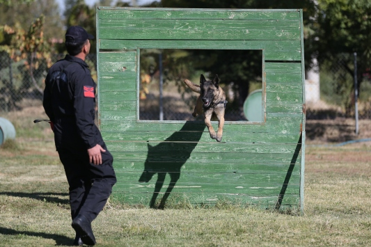 Jandarmanın hassas burunlarına JAKEMde zorlu eğitim