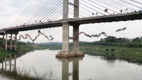 Rekor için 245 kişi aynı anda köprüden atladı