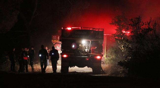 Manisada 2 hektar ormanlık alan kül oldu