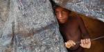 ABD Dışişleri: Arakanlıların kamplarında gördüklerimiz şok ediciydi