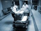 Türkiye'de 30 bine yakın kişi organ nakli bekliyor