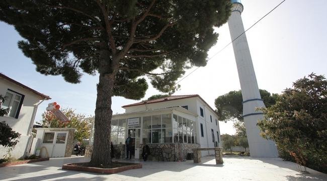 Caminin kıblesinin yanlış olduğu 49 yıl sonra anlaşıldı