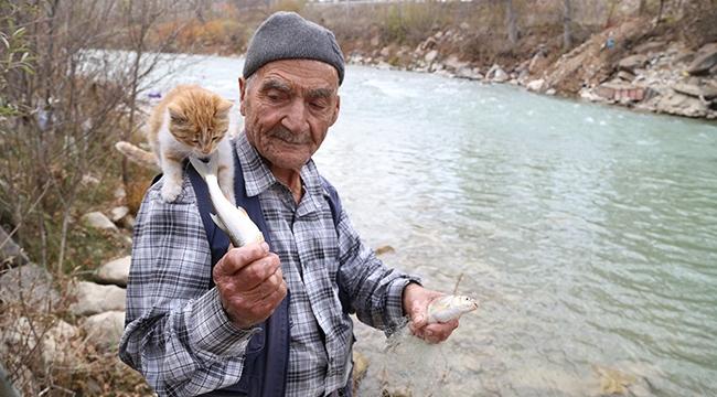 Kediler için her sabah balık avına gidiyor