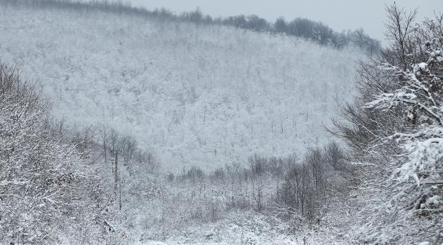 5 ilde kar yağışı bekleniyor
