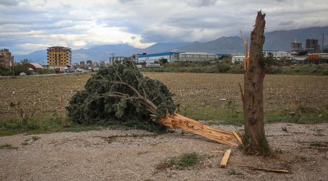 Şiddetli fırtına elektrik direklerini ve ağaçları devirdi, çatıları uçurdu