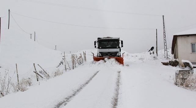 Soğuk hava ve kar yağışı Doğu Anadoluyu esir aldı