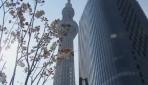 Dünyanın En Yüksek Kulesi Açıldı