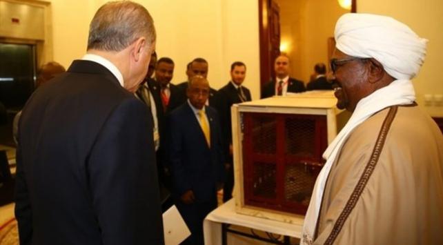 Cumhurbaşkanı Recep Tayyip Erdoğana aslan yavrusu hediye edildi