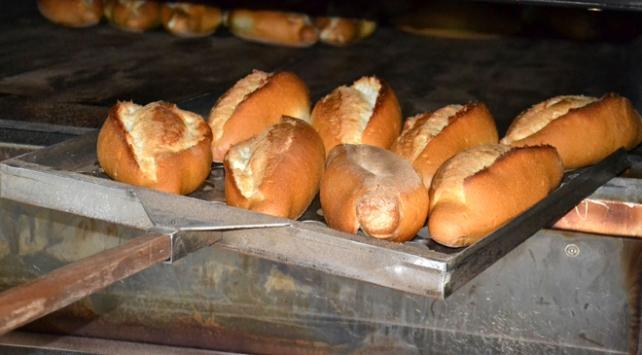 Türkiyede günde yaklaşık 6 milyon ekmeğin israfı önlendi