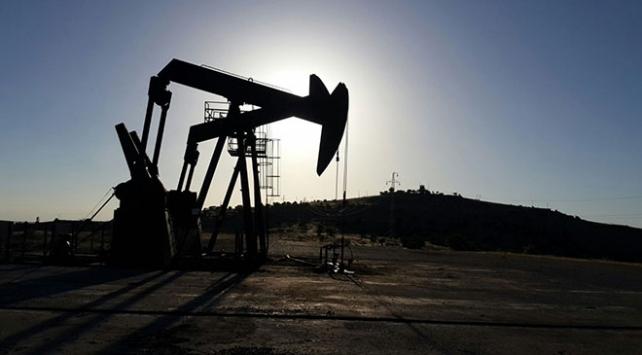 2 firma petrol arama ruhsatı için başvuruda bulundu
