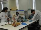 MEB, özel fen ve teknoloji liselerinin derslerini belirledi