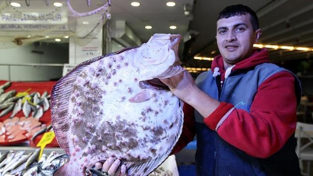 Bu balık altınla yarışıyor: Fiyatı 875 lira