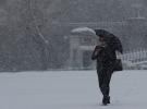 Japonya'yı kar fırtınası vurdu