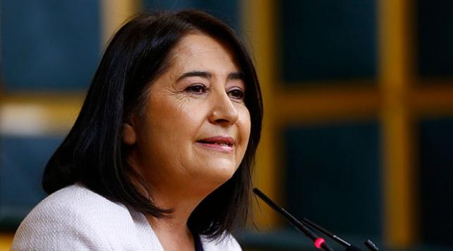 HDP eski Eş Genel Başkanı Kemalbaya gözaltı